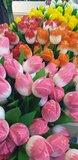 10 houten tulpen voor €20,- _