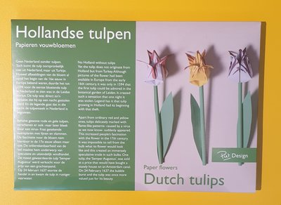 Folding package tulips