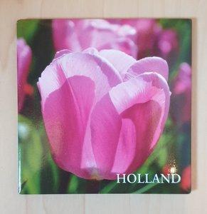 Magneet roze tulp